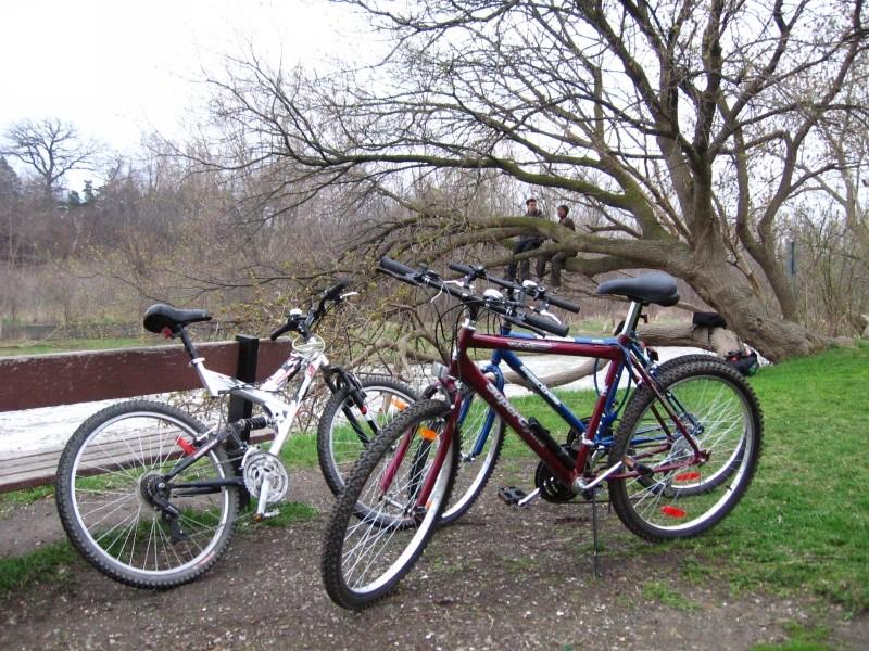 Mississippi River Bike Trail Otsego Mn